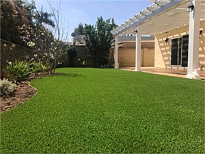 Artificial Turf 009
