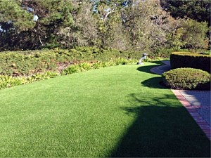 Artificial Turf installed North Plano, TX